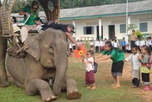 فیلهای کتابخانه به کودکان لائوسی کتاب میرسانند!